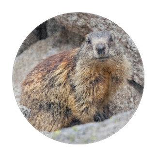 Tabla De Cortar Tablero alpino del corte del vidrio de la marmota