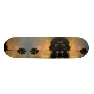 Tablas De Skate Palma