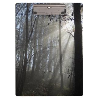Tablero de la niebla de la mañana del arbolado