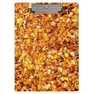 Tablero de las hojas de otoño