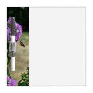 Tablero de mensajes del colibrí