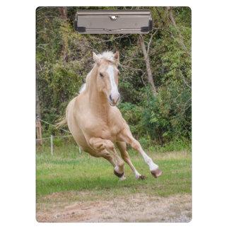 Tablero del caballo del Palomino Carpeta De Pinza