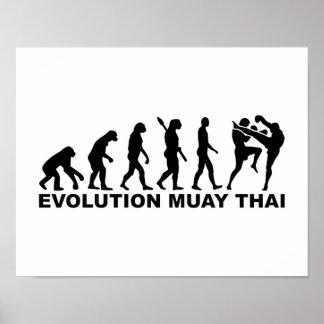 Tailandés de Muay de la evolución Póster