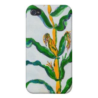 Tallo del maíz iPhone 4 funda