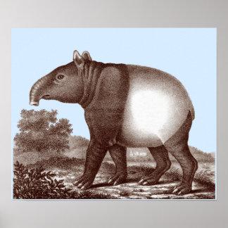 Tapir asiático - color de fondo cambiable y de la  poster