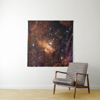 Tapiz NASA marrón de las estrellas de Pismis 24
