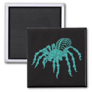 Tarantula esquelético imanes