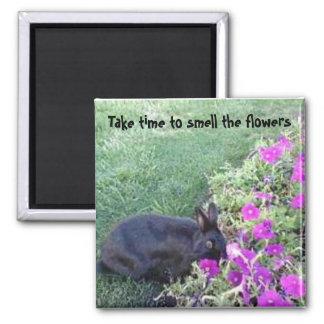 Tarde el tiempo para oler las flores imán