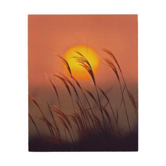 Tarde por el arte de madera de la pared de The Sun