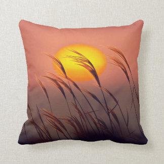 Tarde por las almohadas de The Sun el  