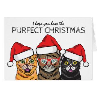 Tarjeta 3 navidad sabio divertido de Purfect de los gatos