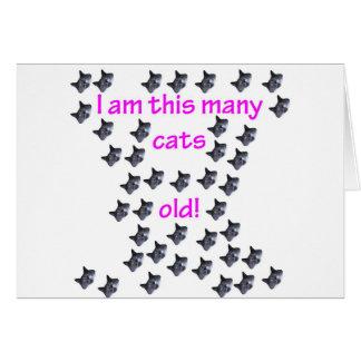 Tarjeta 41 cabezas del gato viejas
