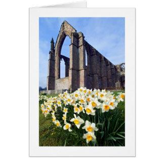 Tarjeta Abadía de Bolton, Wharfedale, los valles de