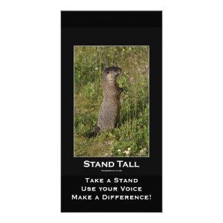 Tarjeta Amarillo-Hinchada de la marmota Tarjetas Con Fotos Personalizadas