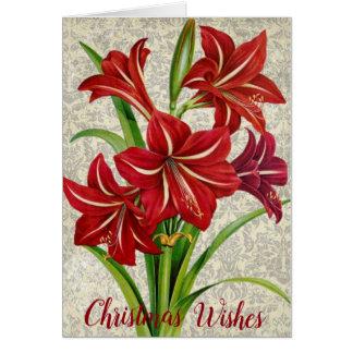 Tarjeta Amaryllis, deseos del navidad