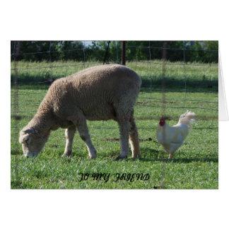 Tarjeta Amigo, ovejas y pollo