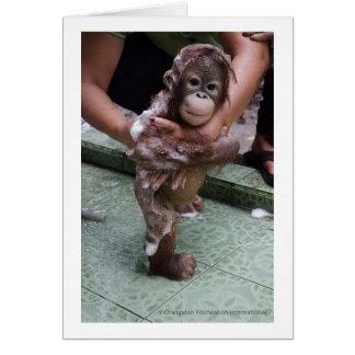 Tarjeta Amo al bebé Jackat de los orangutanes