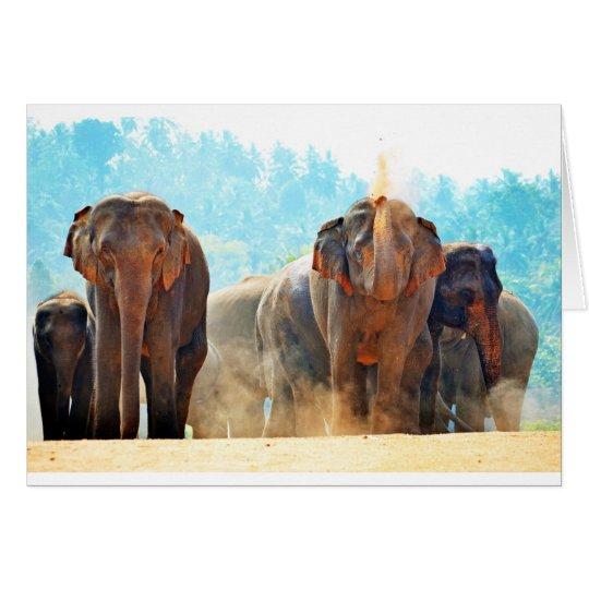 Tarjeta Amor de la paz del destino del safari de los