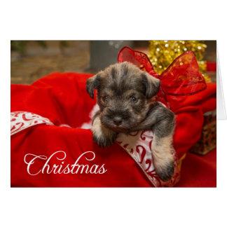 Tarjeta Amor del navidad