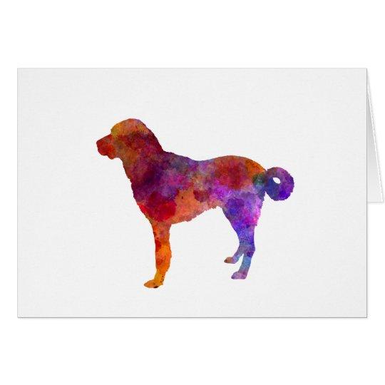 Tarjeta Anatolian Shepherd Dog in watercolor