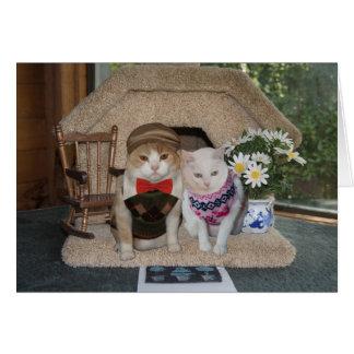 Tarjeta Aniversario lindo con los gatos en suéteres del