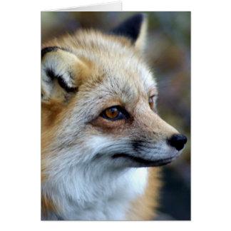 Tarjeta Apenas un pequeño Fox lindo