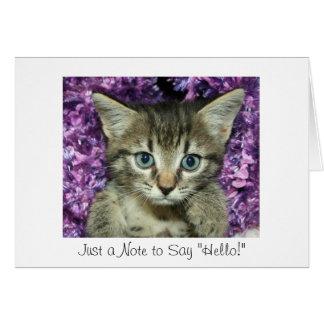 "Tarjeta Apenas una nota a decir ""hola!"" Gatito gris"