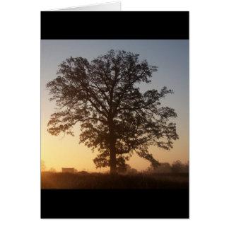 Tarjeta Árbol de Autmn en el amanecer