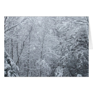 Tarjeta Árbol-En blanco congelada