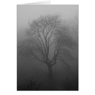Tarjeta Árbol en la niebla