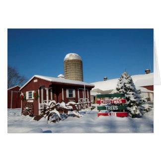 Tarjeta Árboles de navidad de Nueva Inglaterra