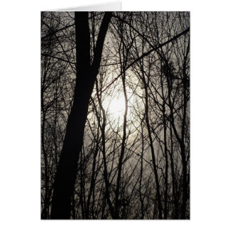 Tarjeta Árboles en sombra