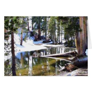 Tarjeta Árboles Forrests de los lagos