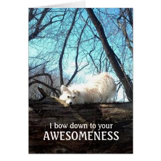Tarjeta Arqueo abajo a su Awesomeness (un agradecimiento