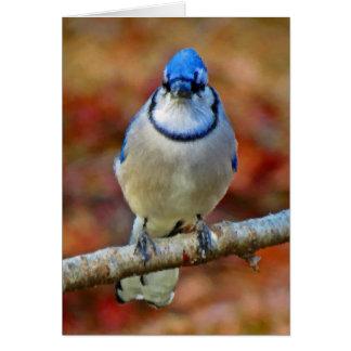 Tarjeta Arrendajo azul intenso - pájaro - vertical