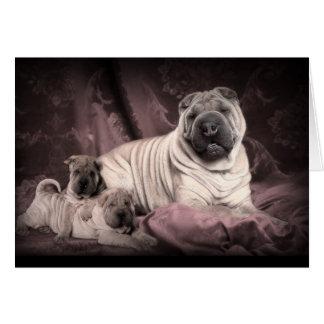 Tarjeta Arrugas de Shar Pei del chino del vintage, perros
