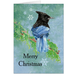Tarjeta Arte estelar de la escritura del pájaro de Jay de