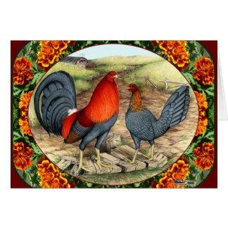 Tarjeta Aves de juego hermosas