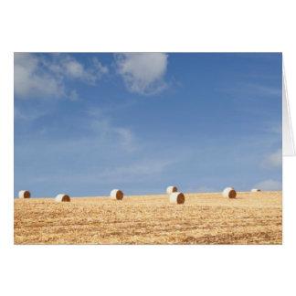 Tarjeta Balas de heno en campo