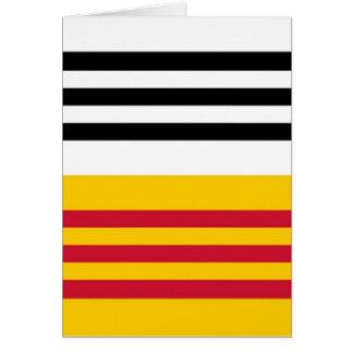 Tarjeta Bandera del bribón Zand de Op. Sys.