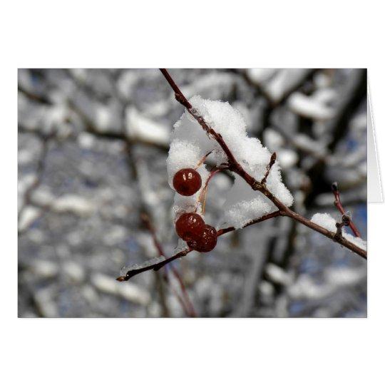 Tarjeta Bayas del invierno