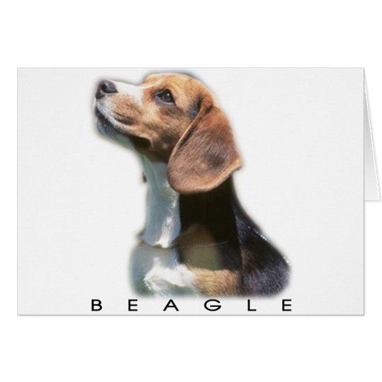 Tarjeta Beagle