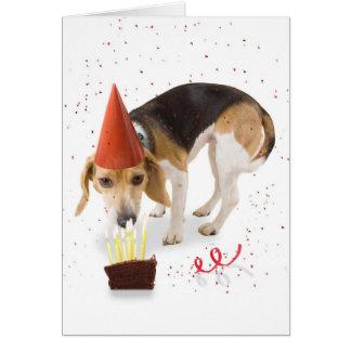 Tarjeta Beagle del cumpleaños