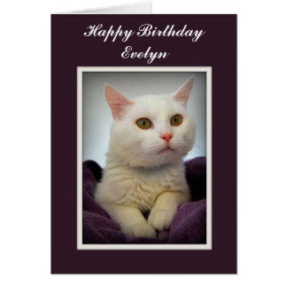Tarjeta blanca del gato del feliz cumpleaños de Ev