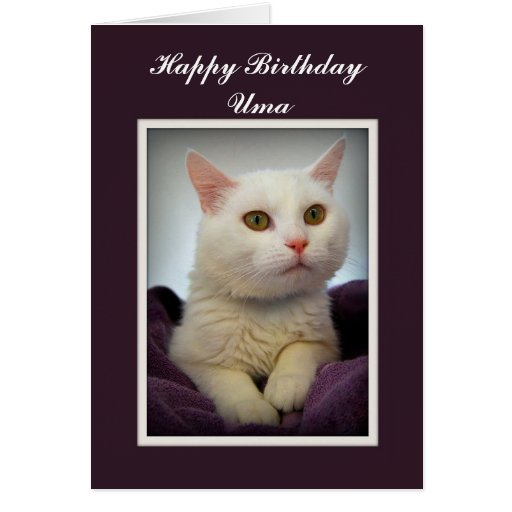 Tarjeta blanca del gato del feliz cumpleaños del U