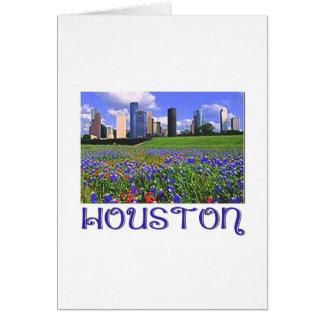 Tarjeta Bluebonnets de Houston Tejas