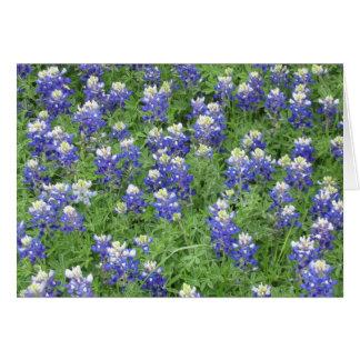 Tarjeta Bluebonnets en un campo