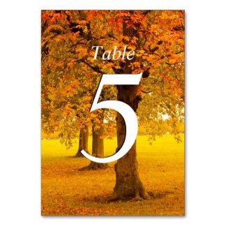 Tarjeta Boda, árboles del otoño, numerados