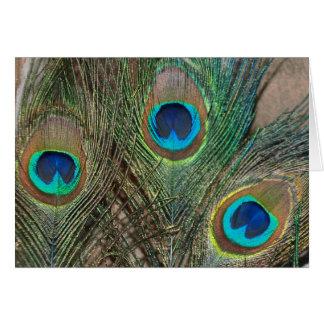 Tarjeta Boda de la pluma del pavo real