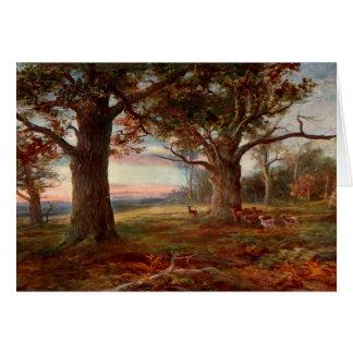 Tarjeta Borde del bosque de Sherwood